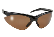 Rake with Polarized Brown Lenses